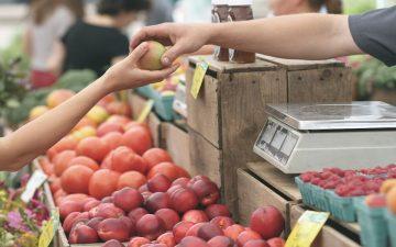 Consumo. Consumidor. (Imagen de Pexels en Pixabay)