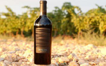 El vino de Bodega Sierra Norte