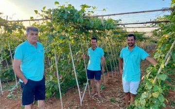 Dos empresas valencianas ganan los Premios BBVA de productores sostenibles