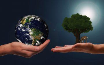 La sostenibilidad y su integracion a las estrategias corporativas