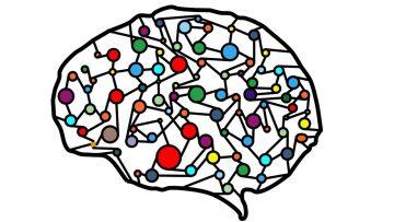 El uso de Deep Learning y tipos de aplicaciones