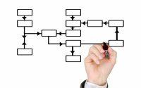 Importancia de un organigrama